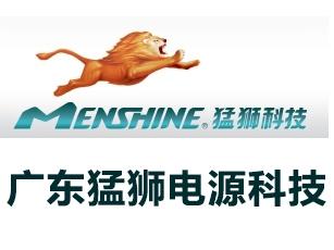 广东猛狮电源科技